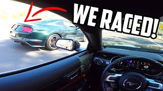 2019 Mustang BULLITT wanted to race my 2019 Mustang GT!