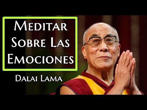 Dalai Lama Meditar Sobre Las  Emociones