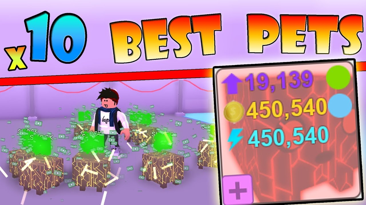 10 Best Pets With Robux Hats 450k Gold Agility Roblox Pet