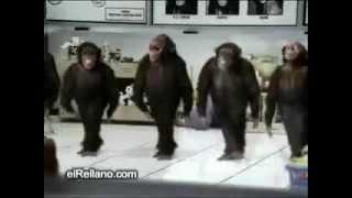 Новый Фильм про обезьян!