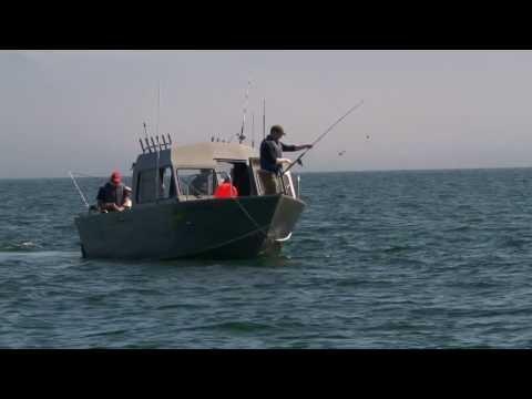 Ketchikan -  Halibut Fishing