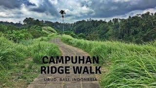 Campuhan Ridge Walk - UBUD, Bali (Vlog Ep. 21)