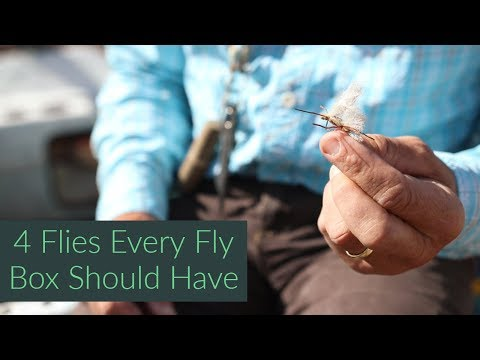 4 Flies Every Fly Box Should Have | Fly Fishing Tips