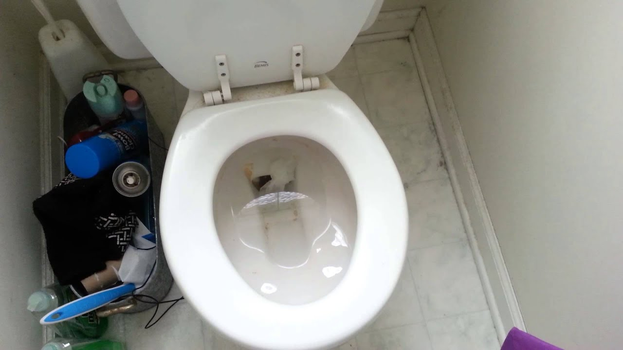 HOW TO CLEAR A CLOGGED TOILET   YouTube