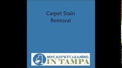 Carpet Restoration in Belleair Beach