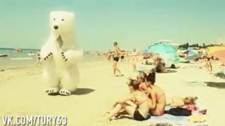 Прикол на пляже. Белый медведь троллит девушек