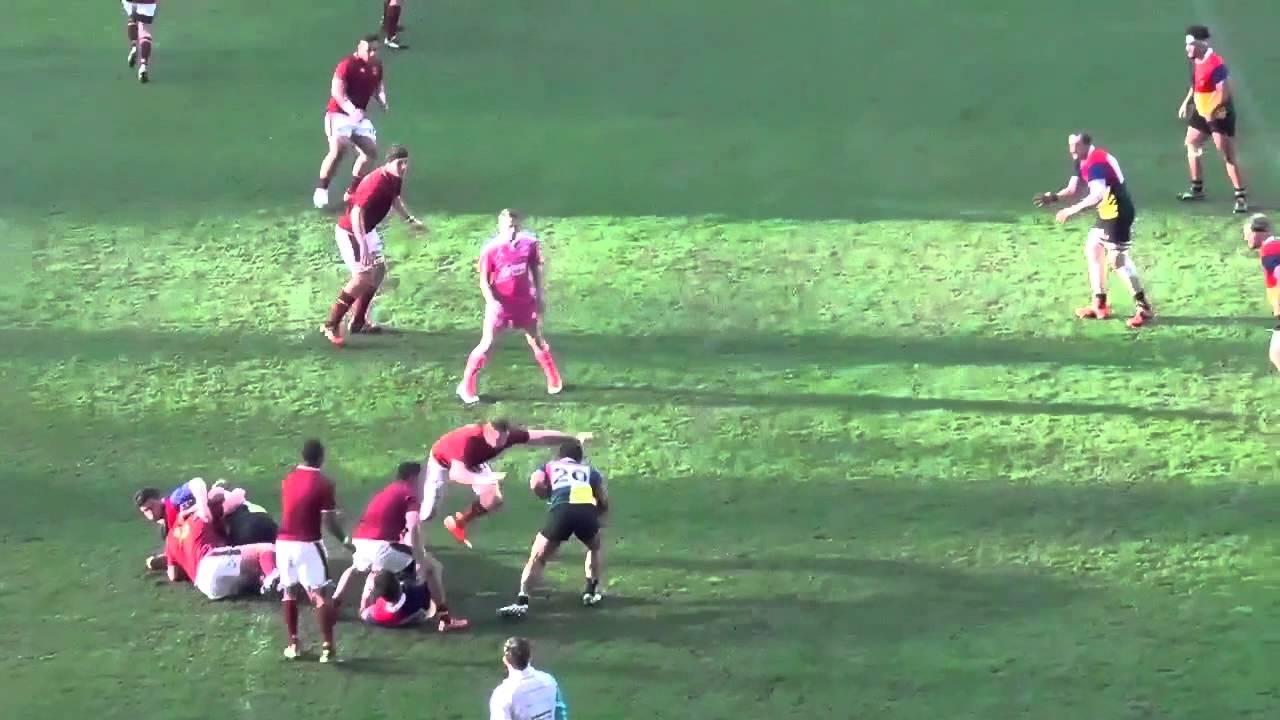 alex taylor rugby cv