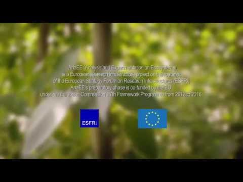 AnaEE: Analysis and Experimentation on Ecosystems - an ambitious European research infrastructure