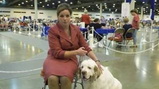 Road to Westminster (RTW): Pro Dog Handler Erin Myers