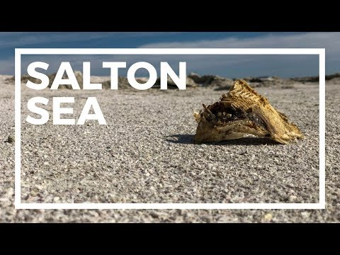 The Salton Sea : Interesting Places