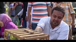 مساء dmc - | سوق السيدة عائشة ... أشهر أسواق تجارة طيور الزينة والحيوانات |