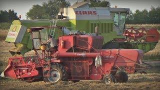 Podsumowanie Żniw 2019 🌾 Koszę Swoję POLE! Massey Ferguson 86 & Ursus c360 ✔ Harvest 2019