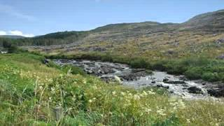 Property For Sale in the UK: near to Glenhinnisdale Isle of Skye 50000 GBP Land/Plot