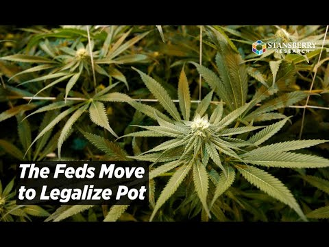The Feds Move To Legalize Pot   Tom Carroll