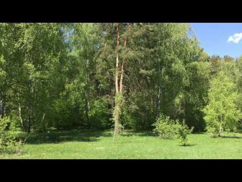 Земельный участок г. Калуга ул.  Ждамировская 10 соток.