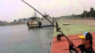台灣海岸釣魚特輯大物特輯上 Taiwan Fishing big fish
