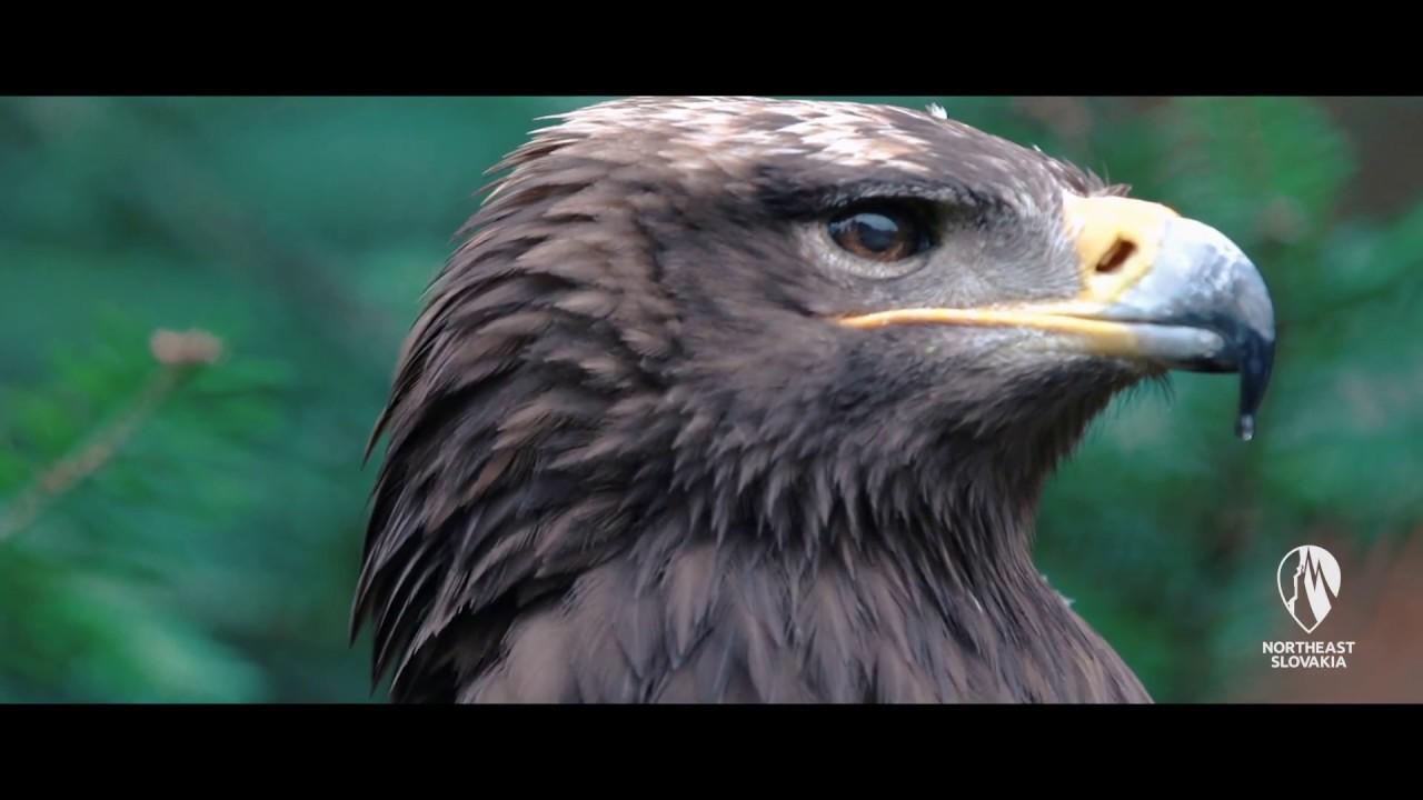 PRESOV REGION Official Videospot