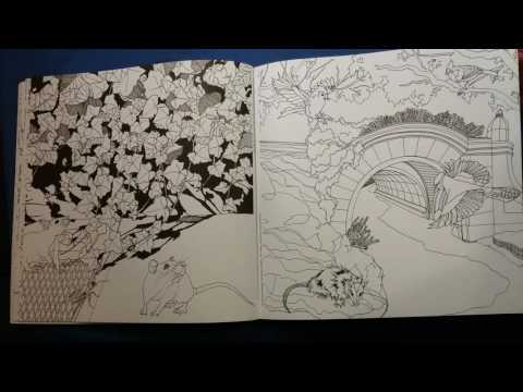The Wildlife Of New York Coloring Book Review