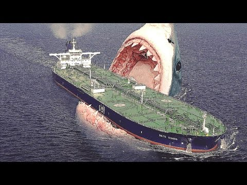 ToP 5: Ամենավտանգավոր կենդանիները աշխարհում