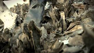 How an Iraq War Vet Found Peace in Oyster Farming