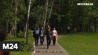 """""""Специальный репортаж"""": """"оттепель"""" - Москва 24"""