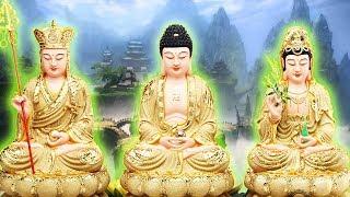 Nếu Nghe Kinh này trước khi ngủ Phật Bà Quan Âm phù hộ cả đời may mắn