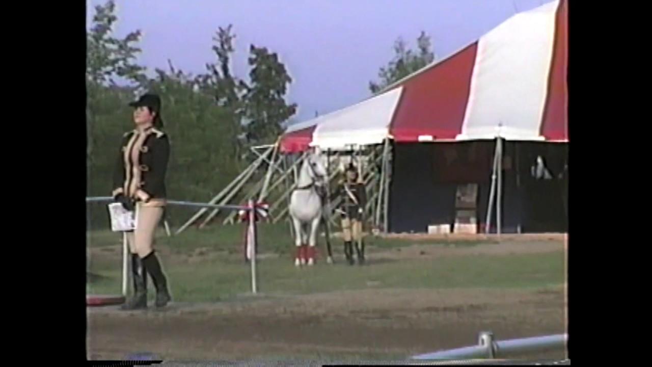 WGOH - Royal Lipizzan Stallions Show  8-12-93