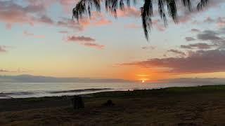 190203 Kauai 12 Waimea Plantation Cottages grounds hammock sunset