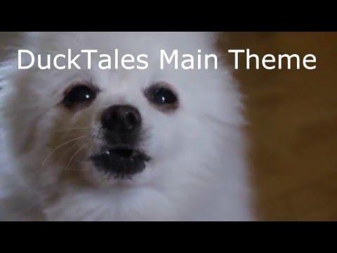 Gabe The Dog Remix Maker