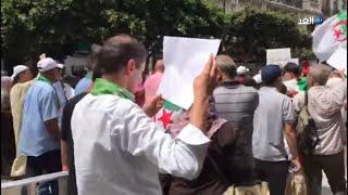 الجزائر الأن..  شاهد هتافات الجمعة 24 في الجزائر
