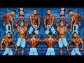 Mr Olympia 2018 - Best BODY Parts In Men's Physique Category