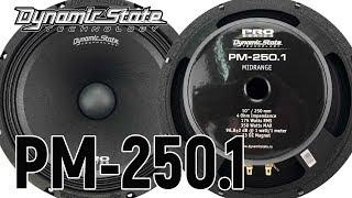 Dynamic State PM-250.1 PRO Series обзор, сравнение, прослушка с рупорам, с серединами, отзыв