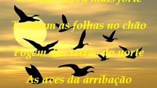 Outono, J.M Oliveira
