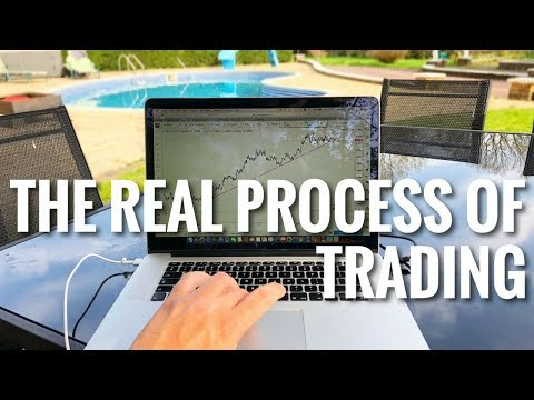 FOREX TRADING - The REAL Process of Trading
