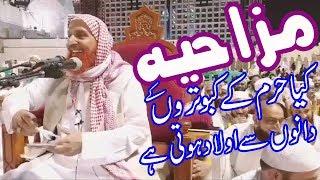 Mazahiya sawal o jawab Makki al Hijazi Funny Q&A Makki Al Hijazi #makki #alhijazi #islamicurdu #alh