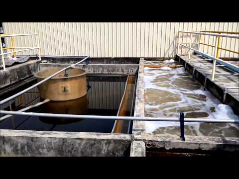 MDF Board Factory Wastewater Treatment Technology