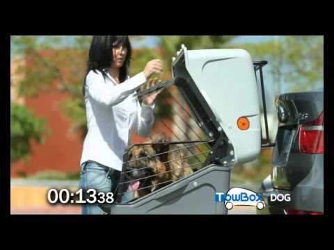 towbox dog votre transport de chien youtube. Black Bedroom Furniture Sets. Home Design Ideas