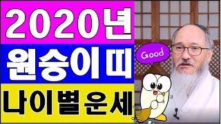 [ 2020년 원숭이띠운세] ◎잔나비띠 토정비결◎ (사업운,직장운,문서운,애정운,건강운,대인관계)