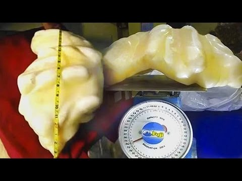 World's Largest $100 Million Dollar Pearl True Story Exclusive Information & Shocking Video Footage