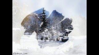 Замерзшее стекло. Видеоуроки от Сергея и Марины Бондаренко