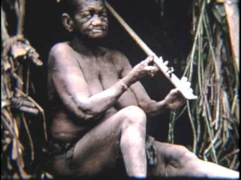 Pygmies of the Congo