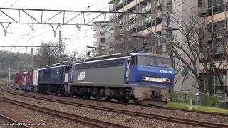 JR貨物 EF200 19号機が牽引する京都鉄博特別展示EF64 1024号機+コキ2両返却回送(H31.1.28)
