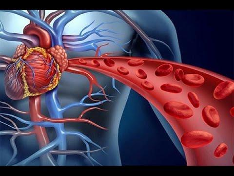Sanguínea la circulación remedios buena para