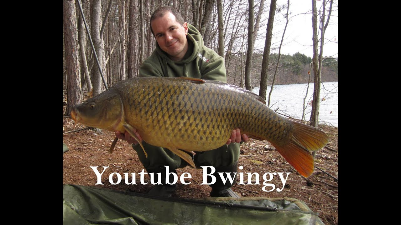 youtube bwingy carp fishing channel trailer youtube