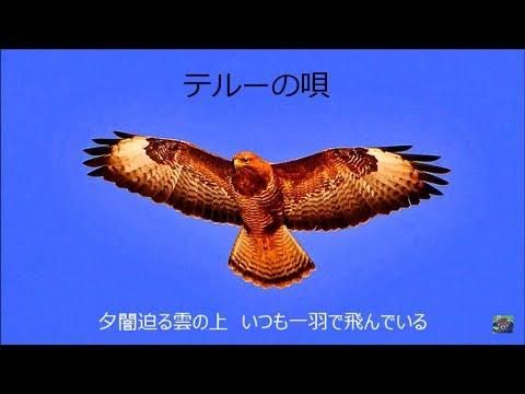 「テルーの唄」手嶌葵 谷山浩子(作曲者)聴き比べ 歌詞付き