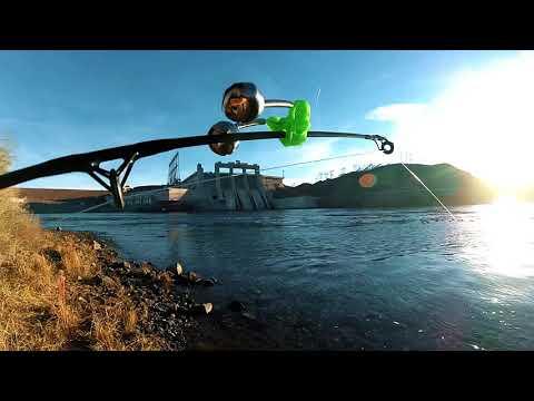 HGF Solo Fishing The Colorado River, Davis Dam (Skunk Alert)