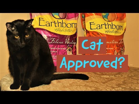 Earthborn Holistic Cat Food Review  Benefits?