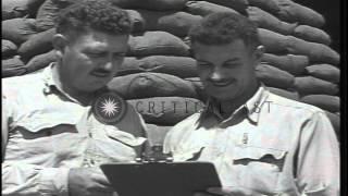 US Marine Corps Lieutenant Colonels on Henderson Field in Guadalcanal, Solomon Is...HD Stock Footage