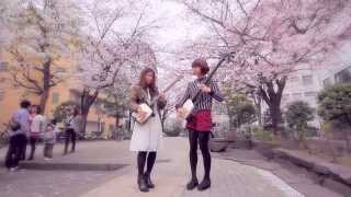 Shamisen Under The Cherry Blossoms - Ki&Ki 輝&輝 津軽三味線