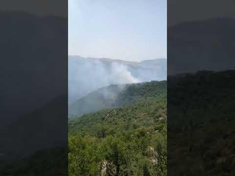 Πέρασε σε ελληνικό έδαφος η φωτιά από την Αλβανία